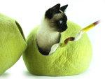 Kivikis Cat cave kattenhuis kattenmand groen birch green kattenmand